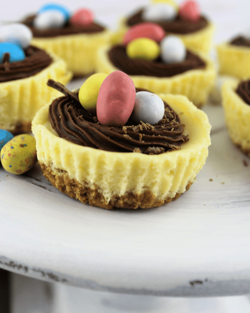 Mini Easter Cheesecakes