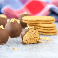 Nutter Butter Balls, peanut butter balls, no bake dessert, 4 ingredient dessert, easy dessert recipe, chocolate and peanut butter recipe, recipes using Nutter Butter Cookies